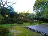 Jardin de la maison le matin