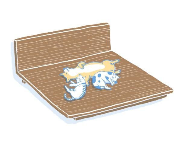 眠豆腐胡桃木床架|雙人特大