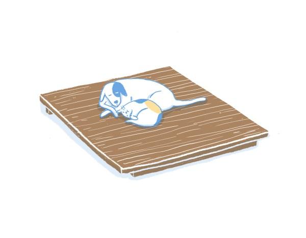 眠豆腐胡桃木床架(無床頭板)|標準雙人