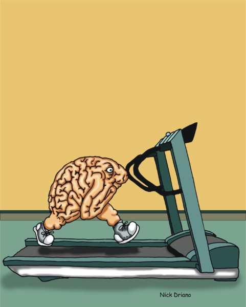 brain on treadmill 2