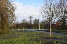 Rotondes Merenwijk (55)