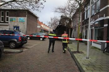 Groot stuk dakbedekking waait in boom, Os en paardenlaan in Leiden