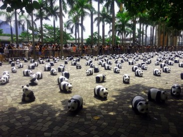 1,600 paper-mache pandas on tour in HK.