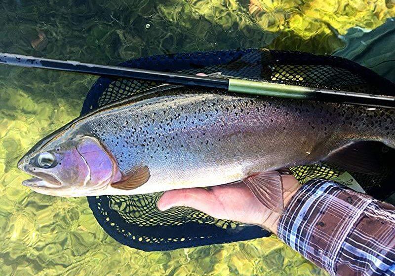 Ultralight Fly Fishing