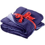 Amethyst Sueded Comforter Throw Blanket $1.99 SHIPPED