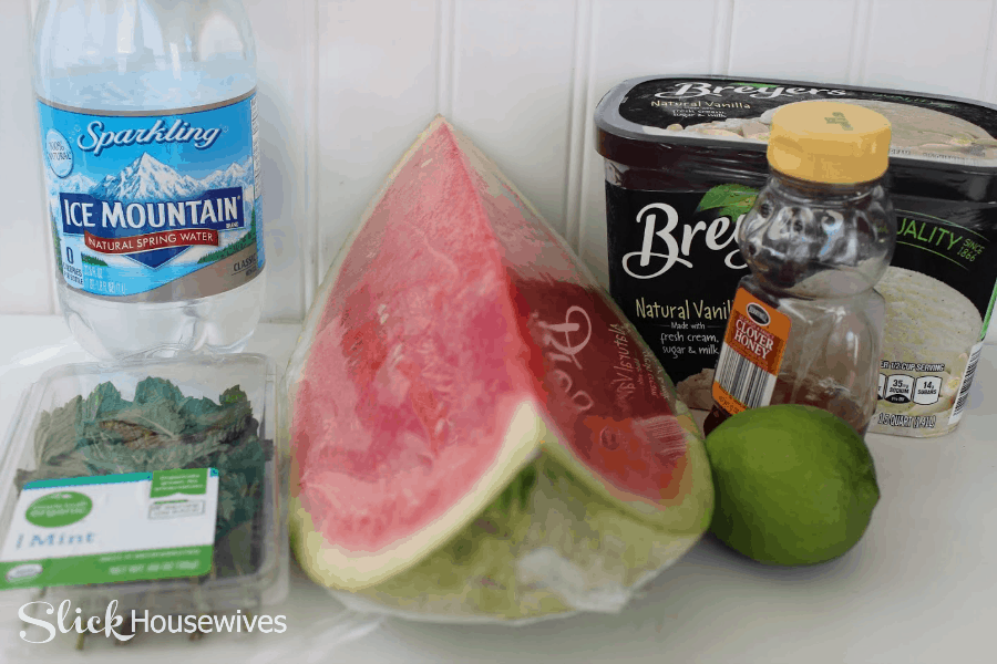 Watermelon Agua Fresca Float Recipe3.png