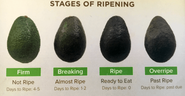 When is an Avocado Ripe