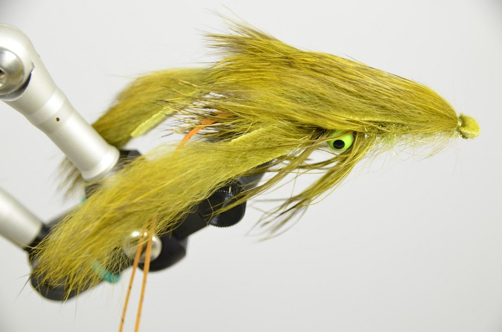 Galloup's Craw- Olive