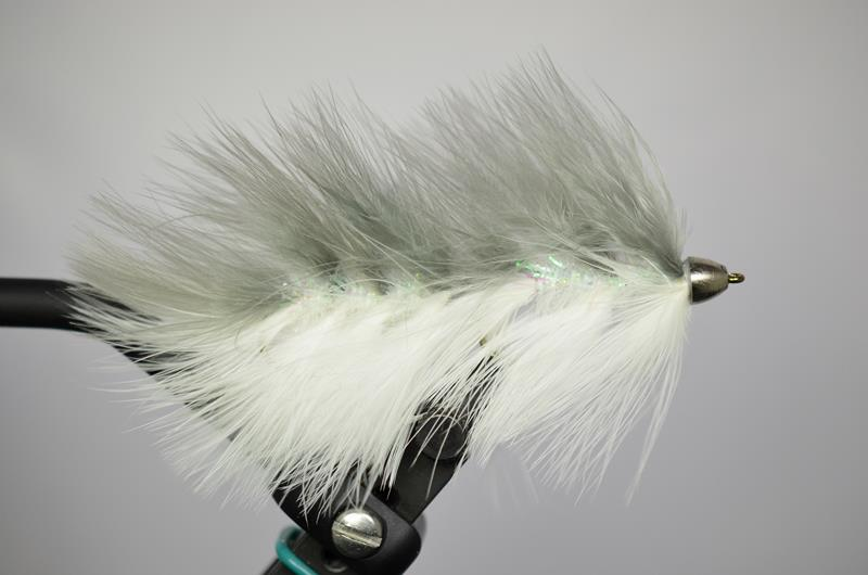 galloup's barely legal conhead gray white