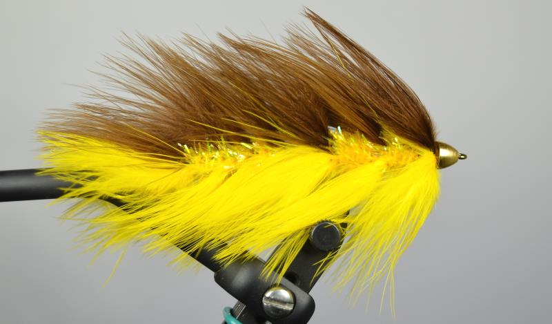 galloups barely legal conehead brown yellow