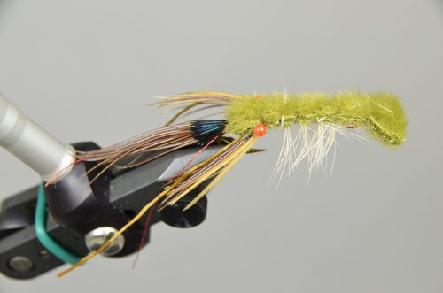 Snapping Craw Olive