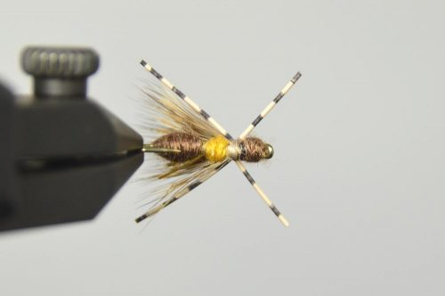 galloup's ant acid fly brown bottom