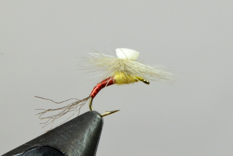 brooks' sprout pmd