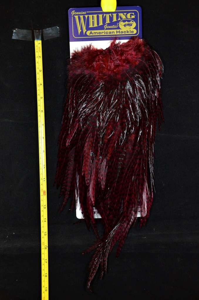 whiting american rooster saddle grizzly claret