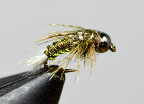 stalcup's bh wired caddis olive