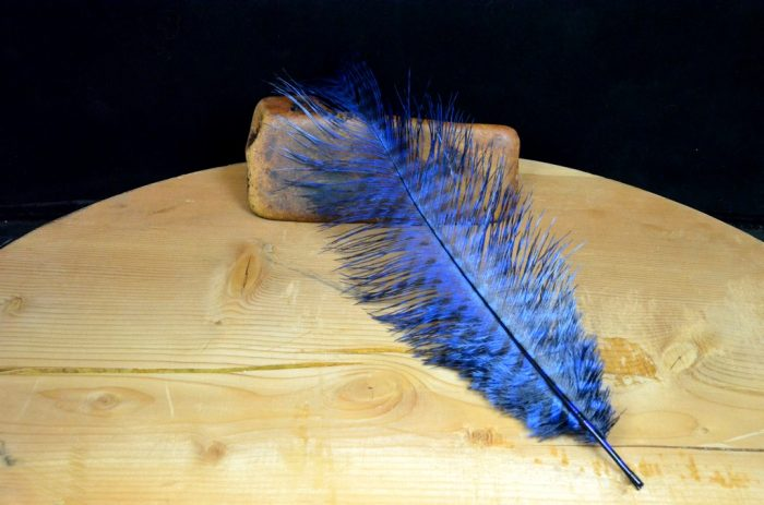 mfc barred ostrich plume blue