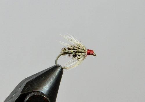 partridge peacock softhackle