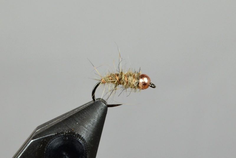 copper hares ear