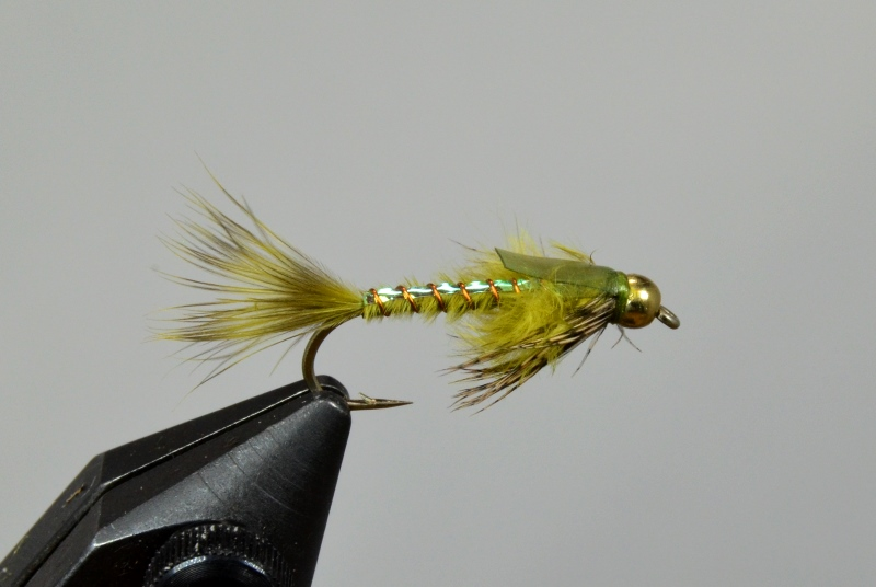 rowley's grizzly damsel