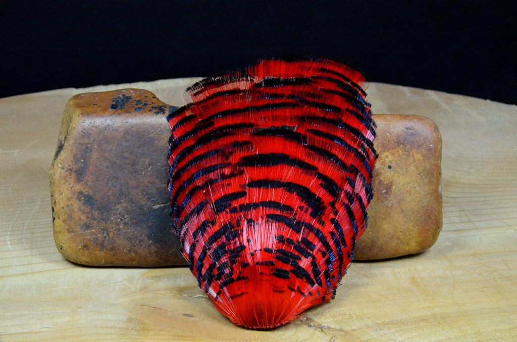 golden pheasant tippet complete red