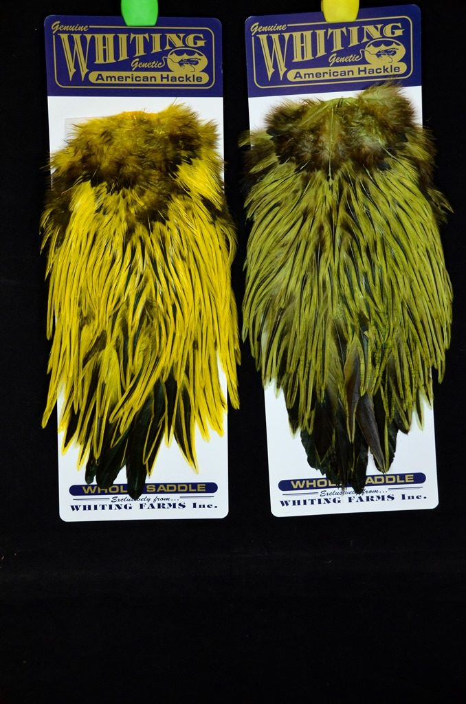 whiting american rooster saddle badger