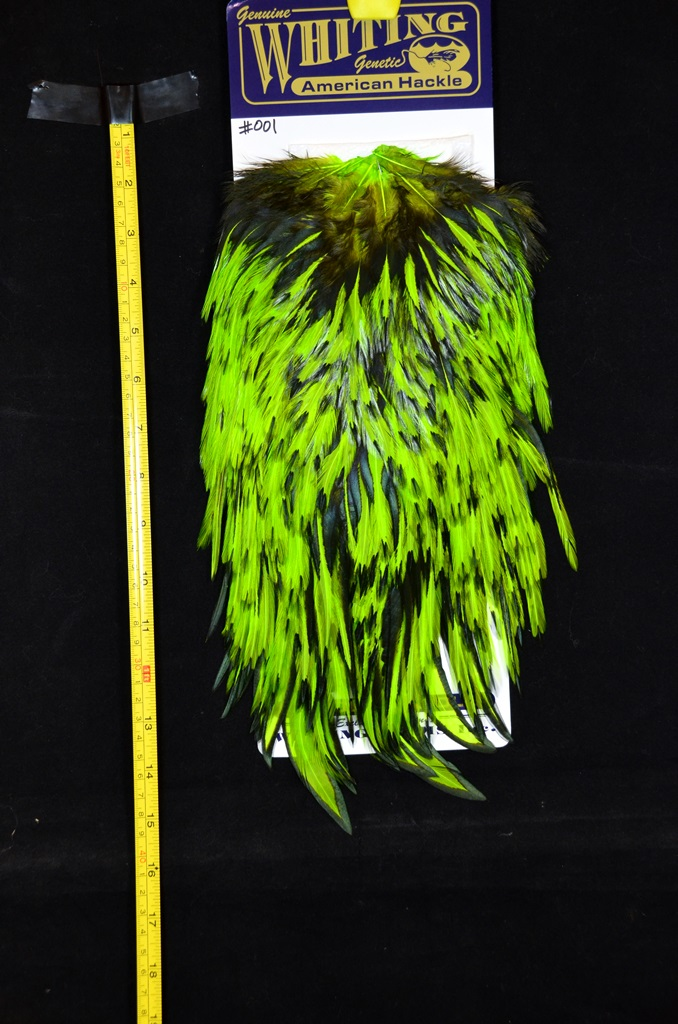whiting american rooster saddle black laced chartreuse #001