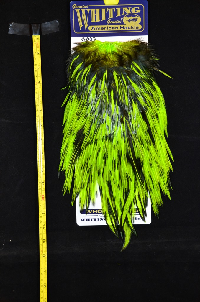 whiting american rooster saddle black laced chartreuse #003