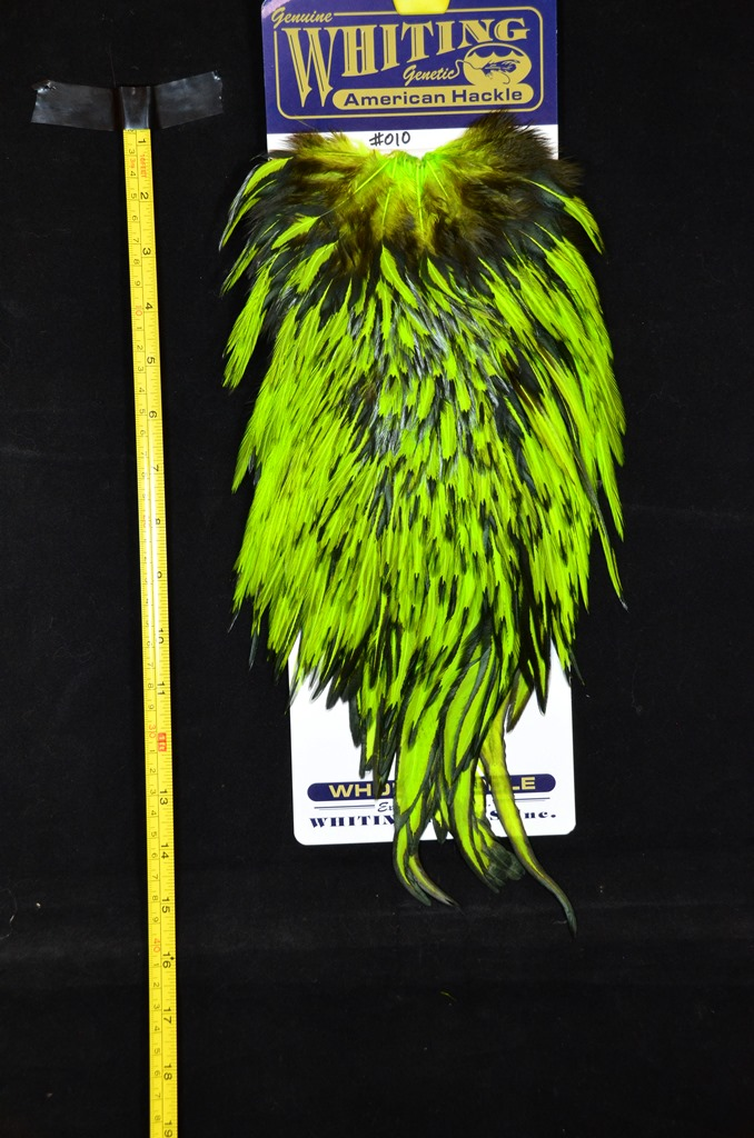 whiting american rooster saddle black laced chartreuse #010