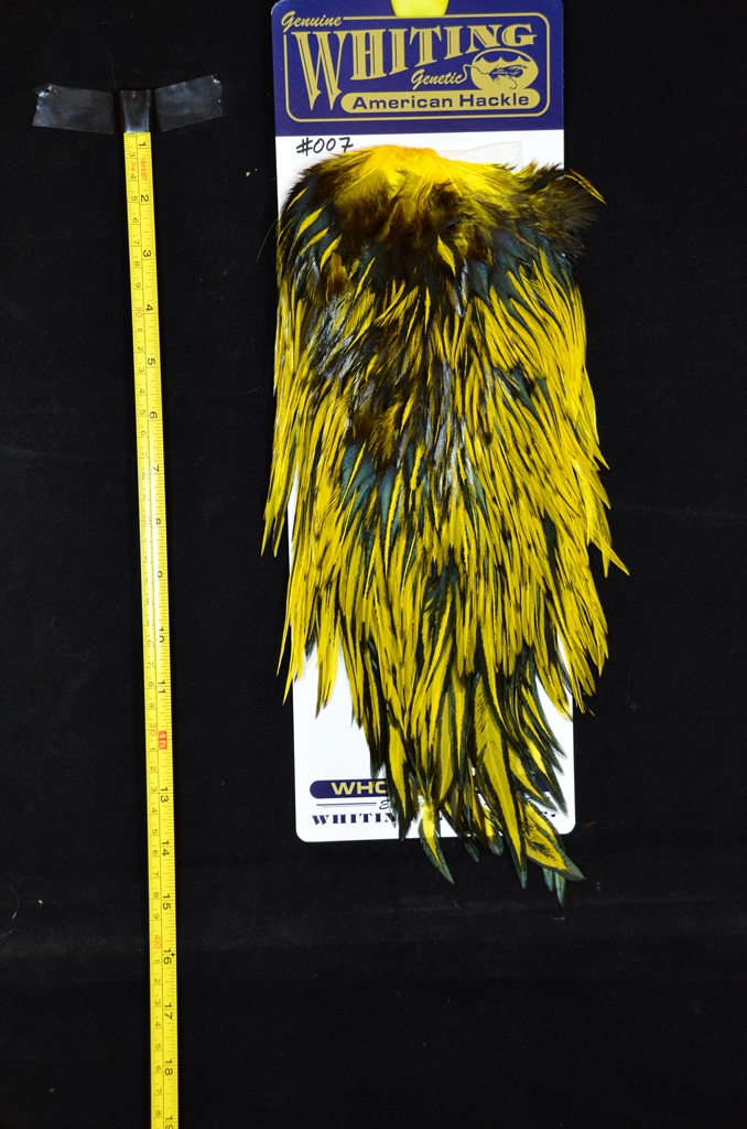 whiting american rooster saddle black laced yellow #007