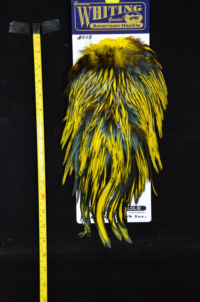 whiting american rooster saddle black laced yellow #008