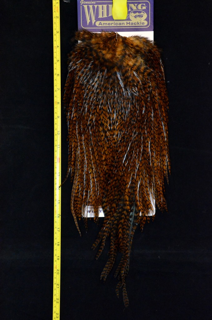 whiting american rooster brown grizzlysaddle