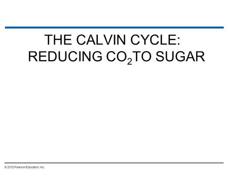 "Calvin Cycle Calvin cycle cannot be called ""dark reaction"