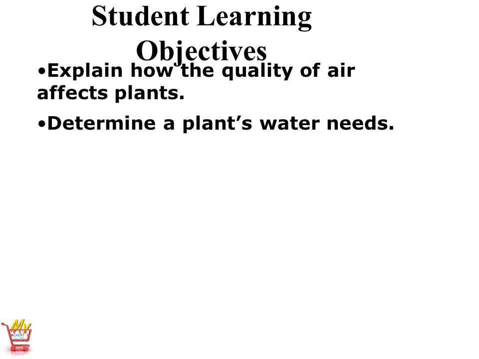 Horticulture Science Lesson 12 Understanding Light
