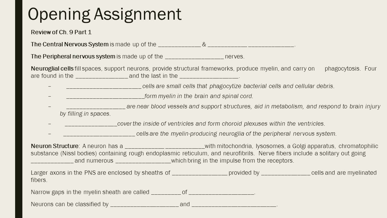 Opening Assignment Review Of Ch 9 Part 1 Ppt Video Online Download