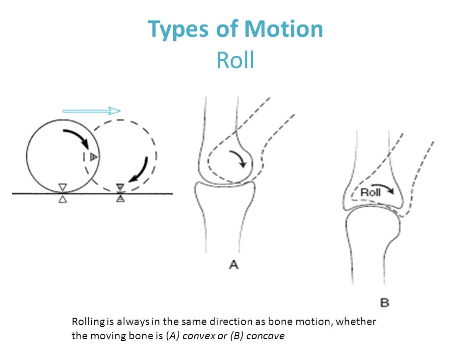 Types Of Joints To Roll