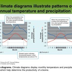 Rainfall Precipitation Diagram 2001 Nissan Frontier Parts Global Climates And Biomes Ppt Download