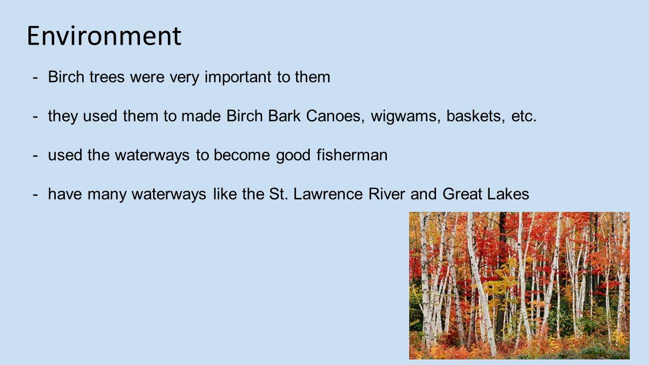 Canoes In Seneca Indian Tribe