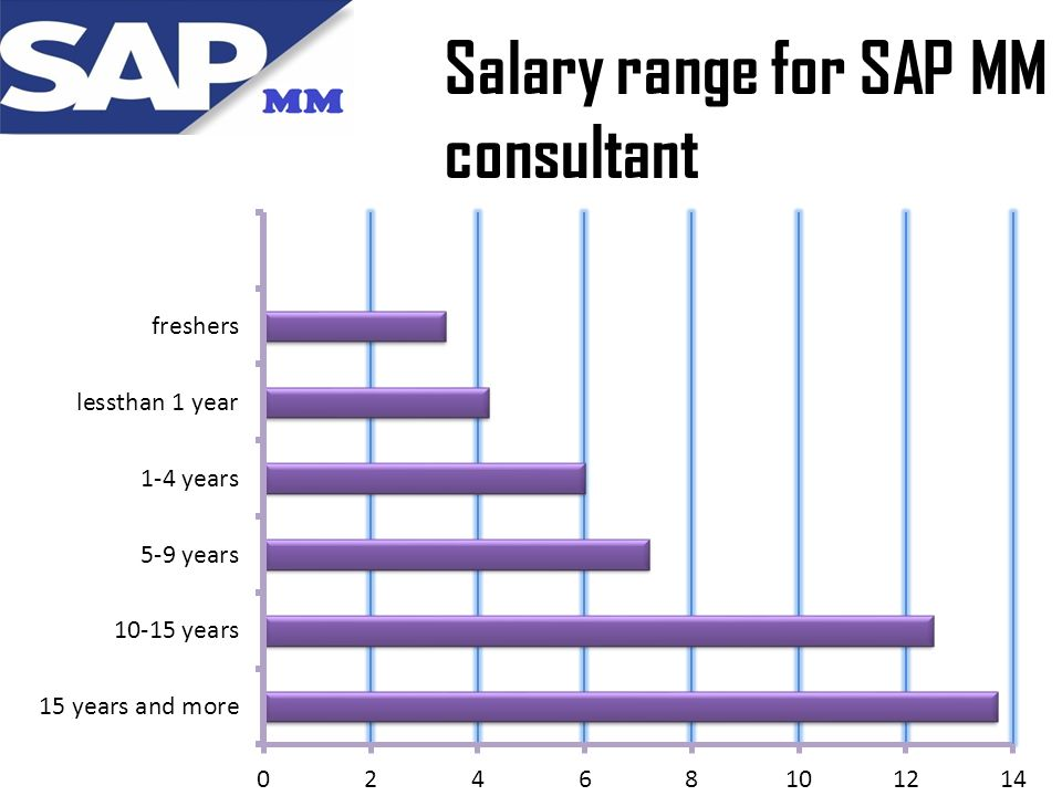 Sap Mm Consultant Cover Letter