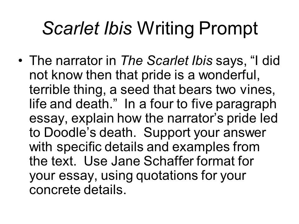 The Scarlet Ibis Essay Outline  ppt video online download