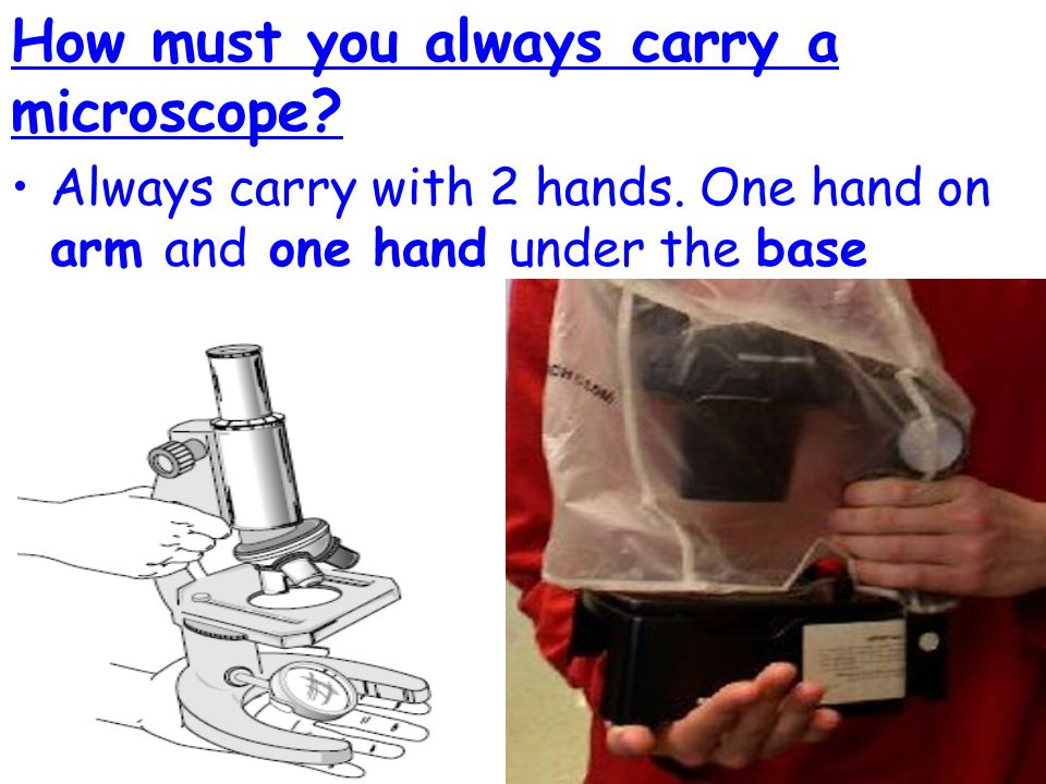 compound microscope diagram wiring wiper motor topic: aim: how do we use the microscope? now: - ppt download