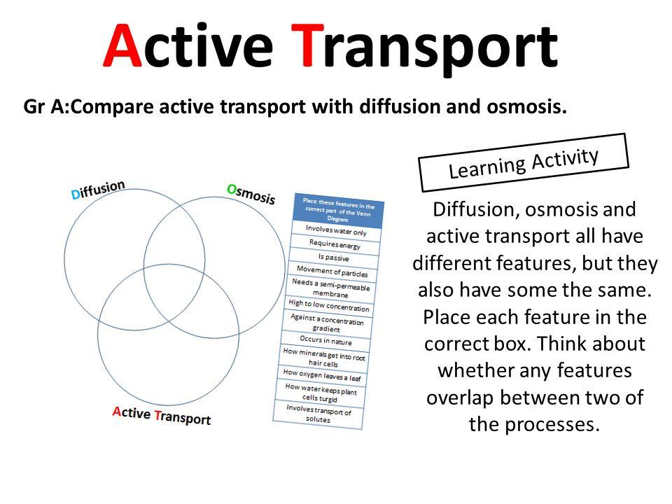 Facilitated Diffusion And Active Transport Venn Diagram