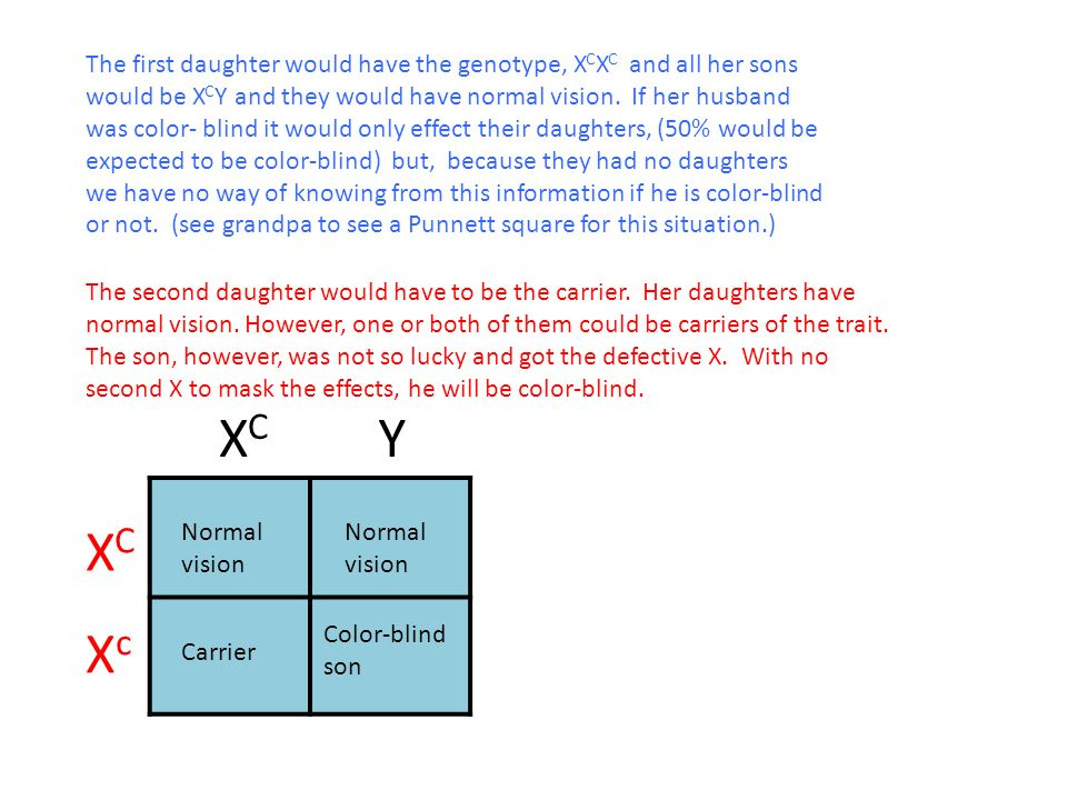 Woman And Has Not Color Blind Color Blindness Trait Shows Father