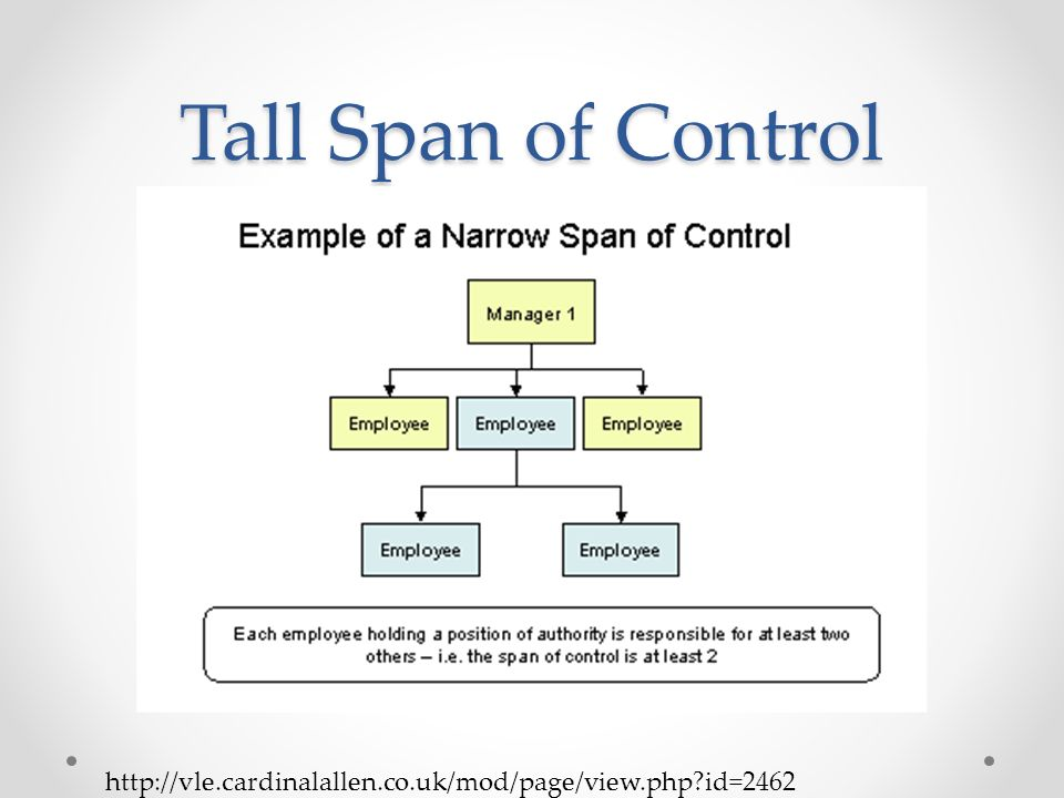 Organizational Structure Ppt Video Online Download