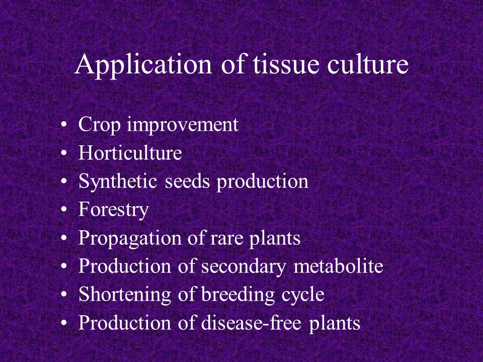 Ppt Plant Tissue Culture Application Powerpoint - Modern