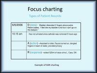 √ Sample Focus Charting For Newborn | Documentation and