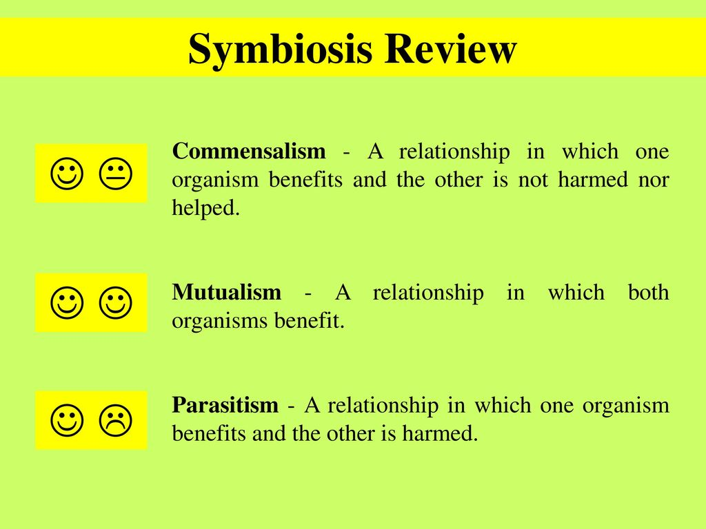 Symbiotic Relationships General Lesson Plan With