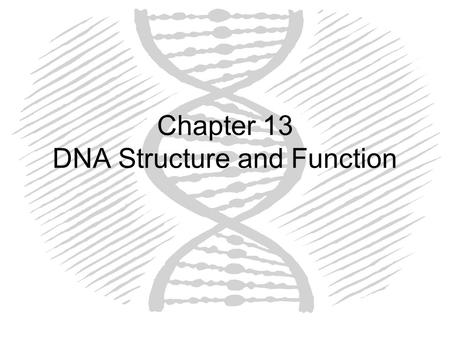 DNA and the Cell Cycle JEOPARDY!! Discovery of DNADNA