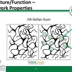 Diagram For 5 Gum Telephone Line Wiring Fiberstar Inc Citri Fi Functional Benefits In Beverage