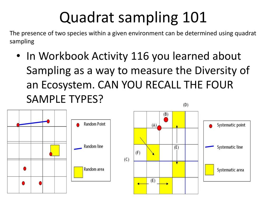 Quadrat Sampling Chi Squared Test
