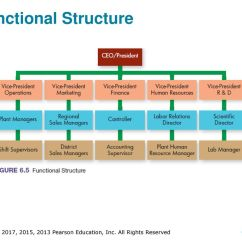 Functional Hierarchy Diagram Brain Frontal View Organizing The Business Ppt Download